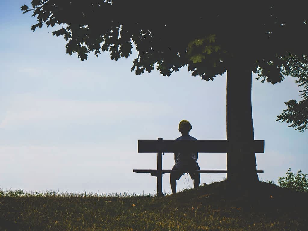 Symptoms of depression, Decreased interest