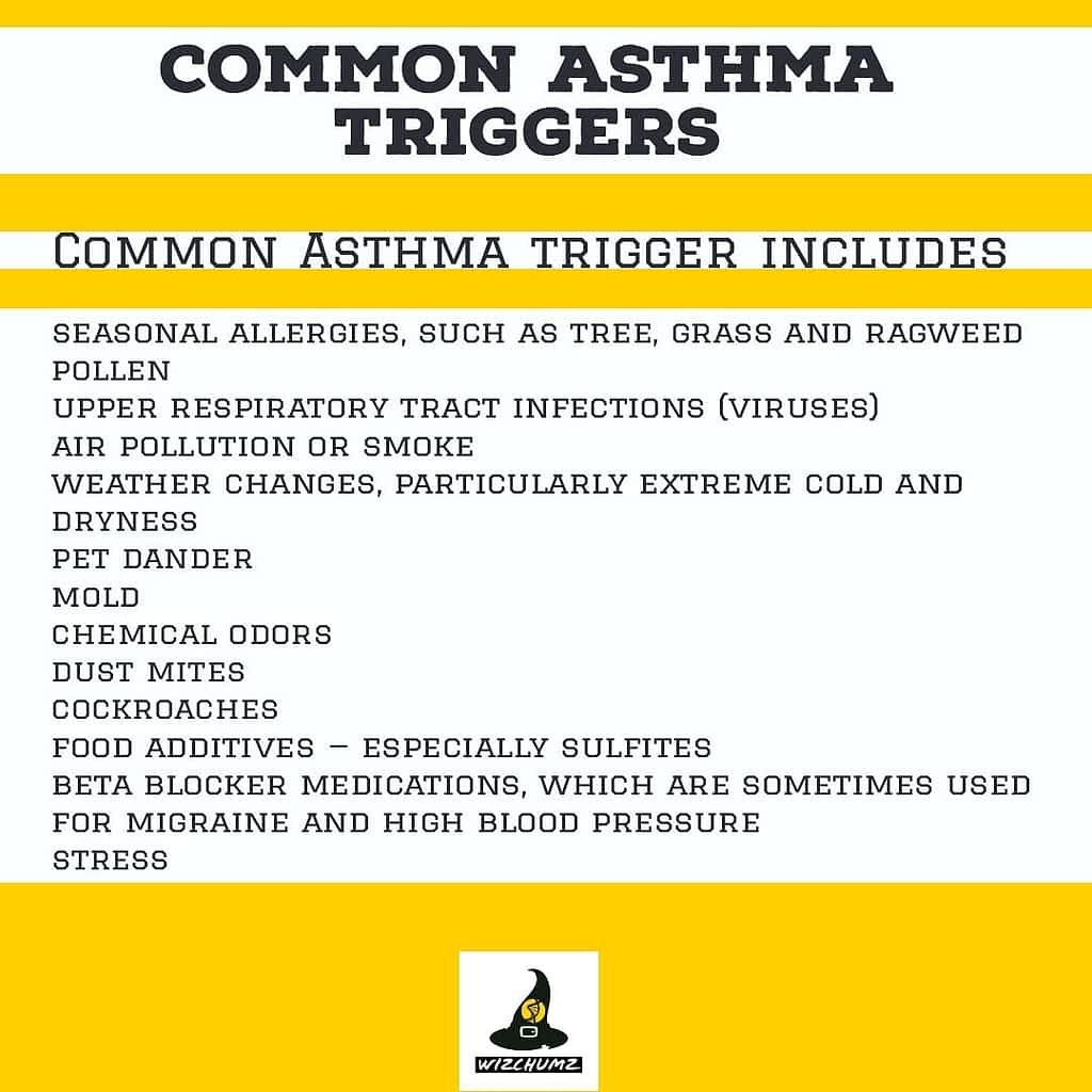 Asthma It's causes symptoms and treatments.